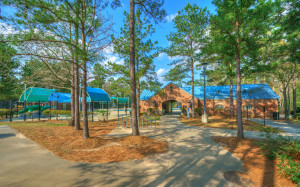 27 Orchard Pines Pl-78
