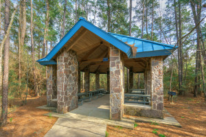 27 Orchard Pines Pl-84